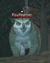 Foulfeather
