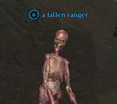 A fallen ranger