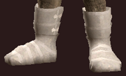 Apostle's Plate Boots of Commitment (Equipped)