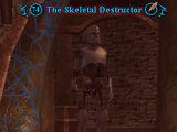 The Skeletal Destructor