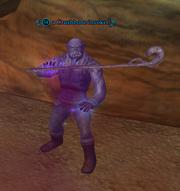 A Crushbone invoker
