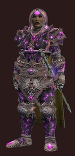 Days-of-summar-armor-set-full