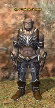 A Brokentusk guard