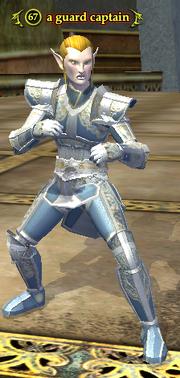 A guard captain