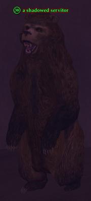 A shadowed servitor (bear)