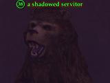 A shadowed servitor (Obelisk of Lost Souls)