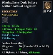 Windwalker's Dark Eclipse Leather Boots of Regrowth