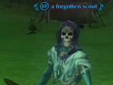 A forgotten scout