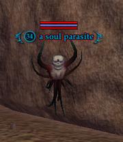 A soul parasite