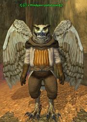A Windgazer portal guard