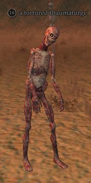 A tortured thaumaturge