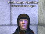 Pupil Adept Wazzlefop
