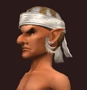Cenobite's Skullcap of the Citadel (Equipped)