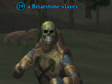 A Briarstone slayer