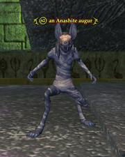 An Anashite augur