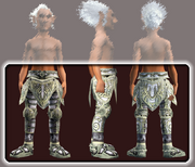 Dragoon's Legplates (Equipped)