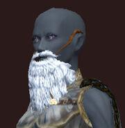 Convincing Santa Glug Beard (Equipped)