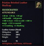 Pristine Bristled Leather Skullcap