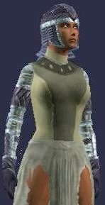 Falconer's Tunic (female)