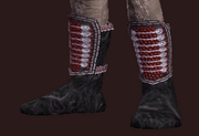 Master's Shoes (Equipped)