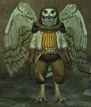 Warvu-mercenary