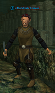 A Darkblade brigand (half elf)