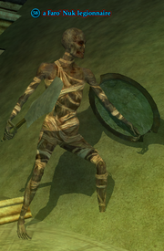 A Faro' Nuk legionnaire