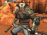 A Sandfury protector