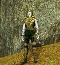 Aery Hunter IV (Master)