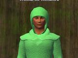 Fethinal the Enchanted