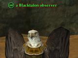 A Blacktalon observer