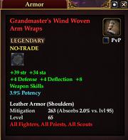 Grandmaster's Wind Woven Arm Wraps