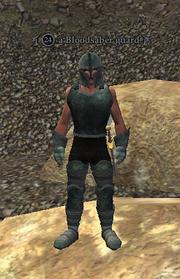 A Bloodsaber guard2