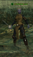 A Darkblade scout (dark elf)