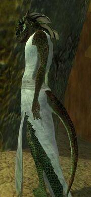 A Swifttail caste servant