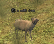 A mith deer