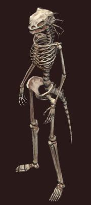 Skeletal Iksar Plushie (Visible)