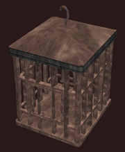 Square Cage (Visible)