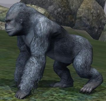 File:Race gorilla.jpg