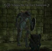 Xilarga the Tae Ew Champion