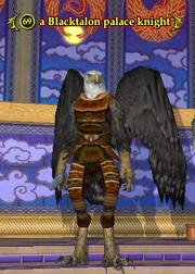 A Blacktalon palace knight