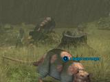 A large scavenger