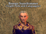 Breego Sunshimmer