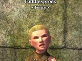 Fuddlesprock
