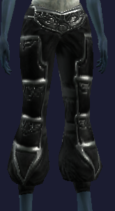 Leggings of the Void (Equipped)