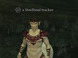A Steelhoof tracker