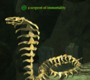 A serpent of immortality