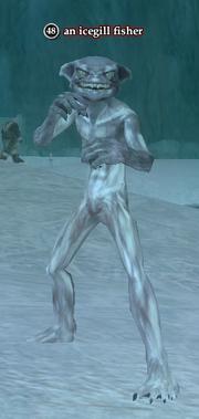 An icegill fisher