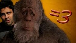 Bigfoot Found!