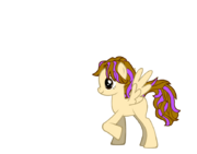 Fillia pony